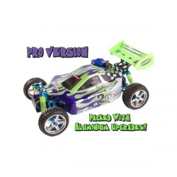 Backwash Pro Nitro Radio Controlled Buggy RTR 2.4Ghz