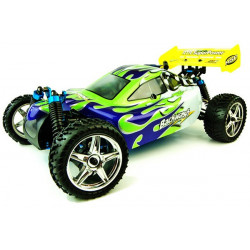 Backwash Nitro Radio Controlled Buggy 2.4Ghz
